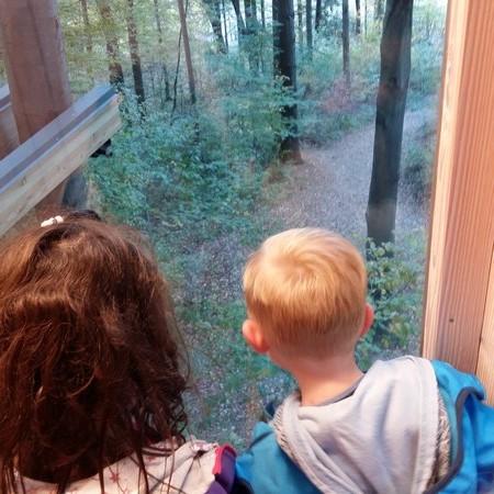 Enota Mehurček: Obiskali smo drevesno hiško v mestnem gozdu